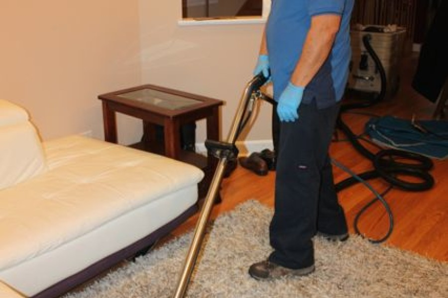 4 Questions You Should Ask Any Carpet Cleaning Company
