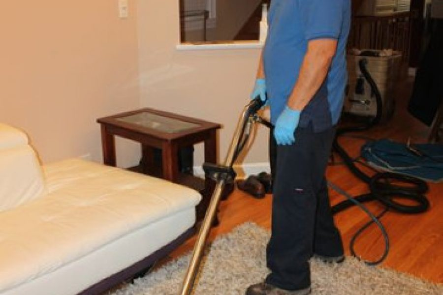 What To Do Before And After The Carpet Cleaners Arrive