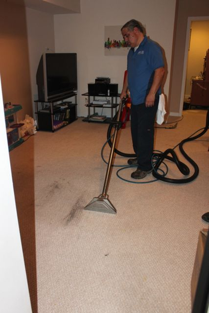 Residential Chicago Carpet And Upholstery Cleaners