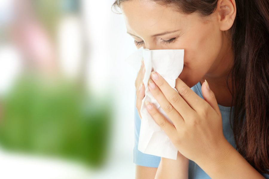 Controlling Allergies with the Right Type of Carpet Cleaning